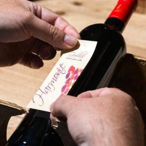 vignoble vin domaine René Rieux
